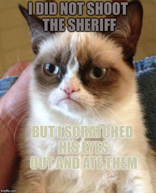 Grumpy Cat Meme | I DID NOT SHOOT THE SHERIFF BUT I SCRATCHED HIS EYES OUT AND ATE THEM | image tagged in memes,grumpy cat | made w/ Imgflip meme maker