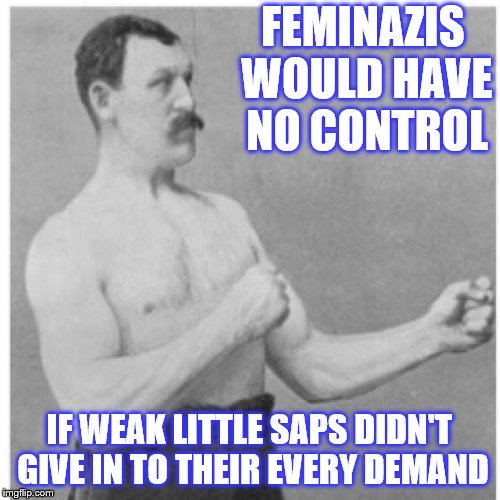 FEMINAZIS WOULD HAVE NO CONTROL IF WEAK LITTLE SAPS DIDN'T GIVE IN TO THEIR EVERY DEMAND | made w/ Imgflip meme maker