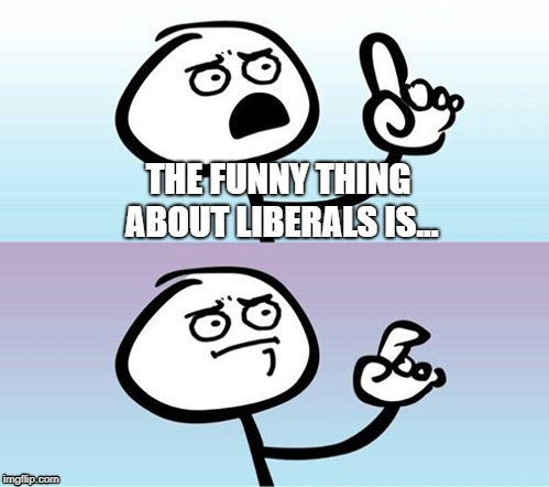 Still Coming Up Short | THE FUNNY THING ABOUT LIBERALS IS... | image tagged in wait a minute  never mind,memes,liberals | made w/ Imgflip meme maker