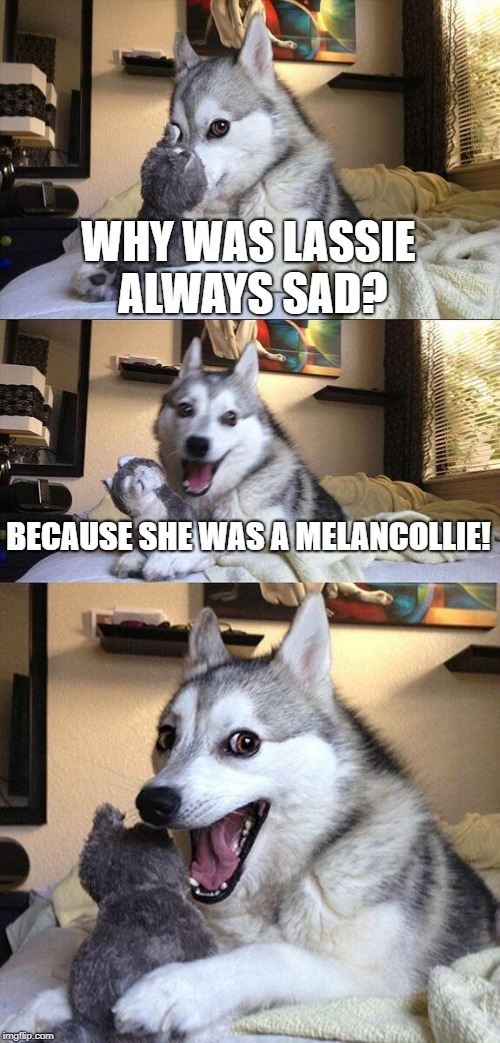 Bad Pun Dog Meme | WHY WAS LASSIE ALWAYS SAD? BECAUSE SHE WAS A MELANCOLLIE! | image tagged in memes,bad pun dog | made w/ Imgflip meme maker