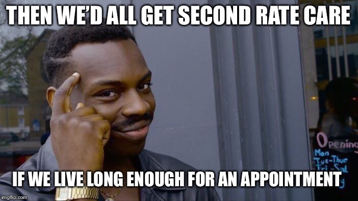 Roll Safe Think About It Meme | THEN WE'D ALL GET SECOND RATE CARE IF WE LIVE LONG ENOUGH FOR AN APPOINTMENT | image tagged in memes,roll safe think about it | made w/ Imgflip meme maker