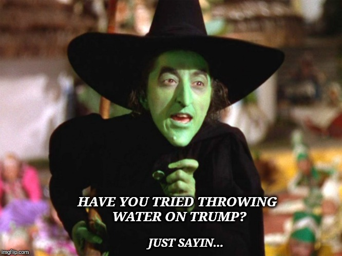 I'm Melting! | HAVE YOU TRIED THROWING WATER ON TRUMP? JUST SAYIN... | image tagged in wicked witch of the west,donald trump the clown,flying monkeys,trump sucks,treason,traitor | made w/ Imgflip meme maker