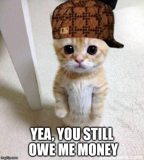 Cute Cat Meme | YEA, YOU STILL OWE ME MONEY | image tagged in memes,cute cat,scumbag | made w/ Imgflip meme maker