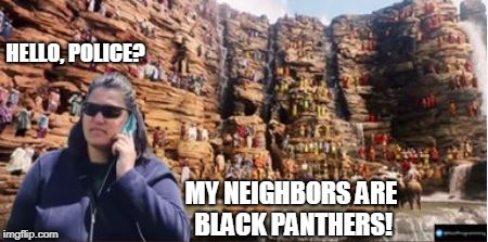 BBQ Becky's neighbors | HELLO, POLICE? MY NEIGHBORS ARE BLACK PANTHERS! | image tagged in bbq,funny,black panther,that's racist | made w/ Imgflip meme maker