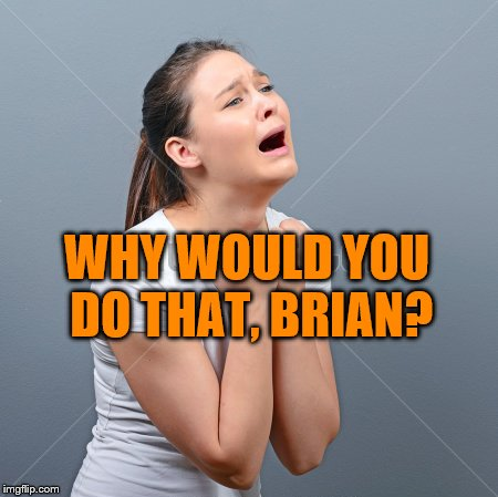 WHY WOULD YOU DO THAT, BRIAN? | made w/ Imgflip meme maker