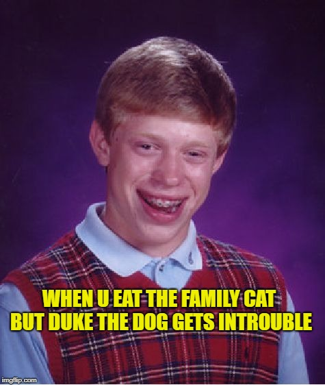 Autistic Brian  | WHEN U EAT THE FAMILY CAT BUT DUKE THE DOG GETS INTROUBLE | image tagged in memes,bad luck brian,dogs,cats,eating,autism | made w/ Imgflip meme maker