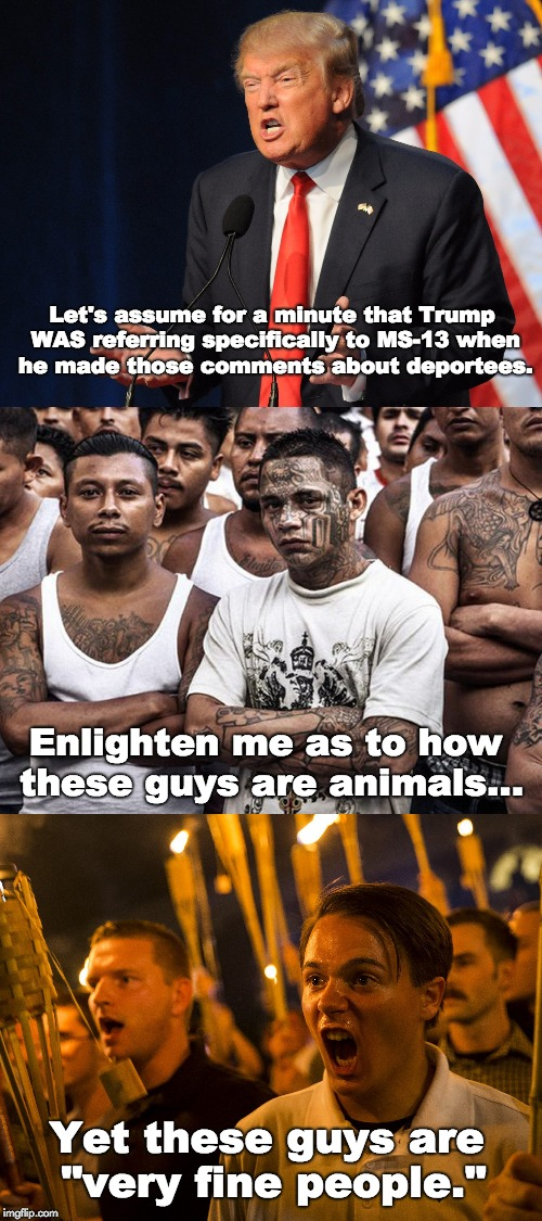Animal in Chief  | Let's assume for a minute that Trump WAS referring specifically to MS-13 when he made those comments about deportees. Enlighten me as to how | image tagged in donald trump,ms-13,nazi,charlottesville,animals,illegal immigration | made w/ Imgflip meme maker