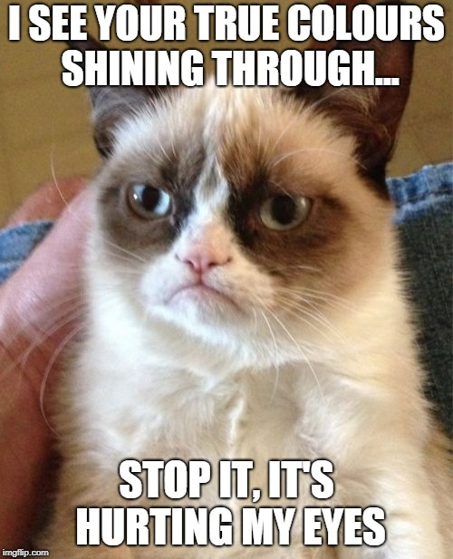 Grumpy Cat Meme | I SEE YOUR TRUE COLOURS SHINING THROUGH... STOP IT, IT'S HURTING MY EYES | image tagged in memes,grumpy cat | made w/ Imgflip meme maker