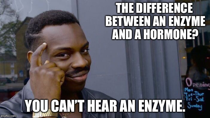 Roll Safe Think About It Meme | THE DIFFERENCE BETWEEN AN ENZYME AND A HORMONE? YOU CAN'T HEAR AN ENZYME. | image tagged in memes,roll safe think about it | made w/ Imgflip meme maker