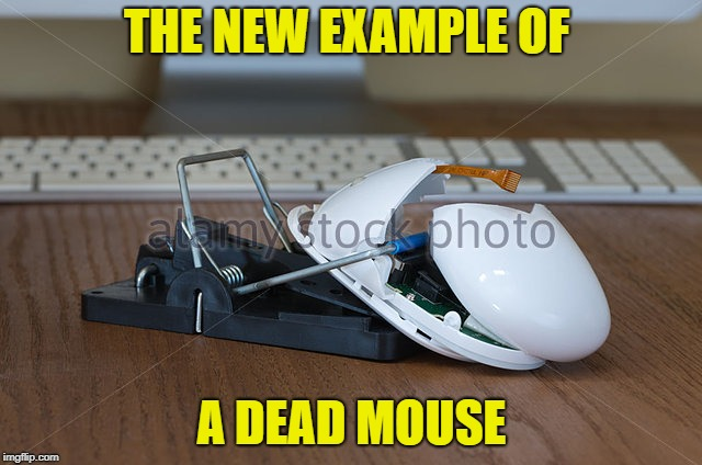 dead mouse | THE NEW EXAMPLE OF A DEAD MOUSE | image tagged in computer,funny,mouse trap | made w/ Imgflip meme maker