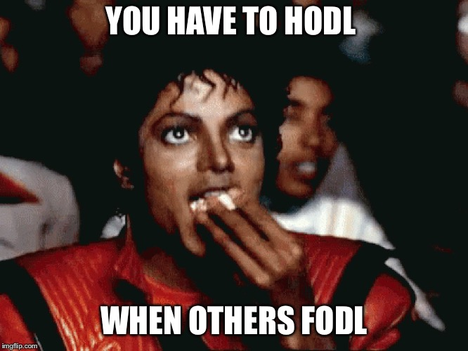 YOU HAVE TO HODL WHEN OTHERS FODL | image tagged in hodl fodl | made w/ Imgflip meme maker