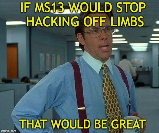 That Would Be Great Meme | IF MS13 WOULD STOP HACKING OFF LIMBS THAT WOULD BE GREAT | image tagged in memes,that would be great | made w/ Imgflip meme maker