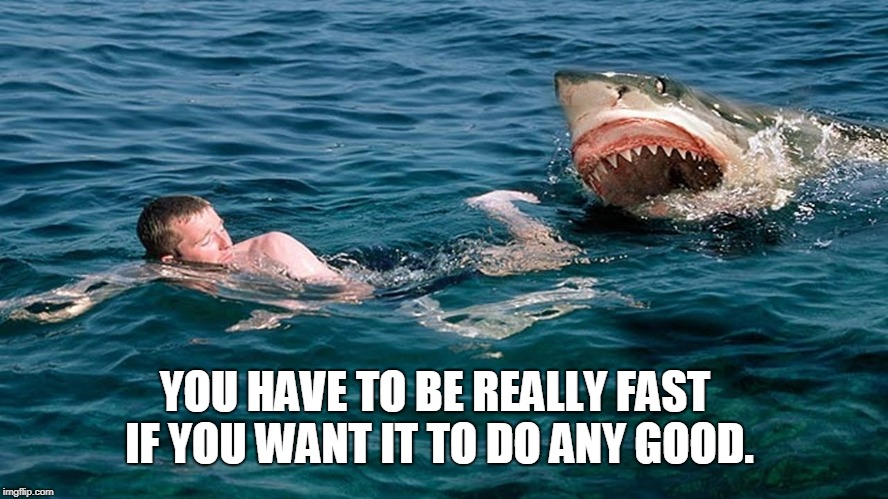 YOU HAVE TO BE REALLY FAST IF YOU WANT IT TO DO ANY GOOD. | image tagged in shark swimming | made w/ Imgflip meme maker