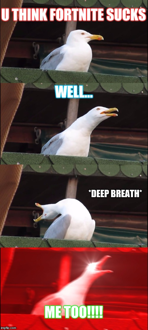 Inhaling Seagull Meme | U THINK FORTNITE SUCKS WELL... *DEEP BREATH* ME TOO!!!! | image tagged in memes,inhaling seagull | made w/ Imgflip meme maker