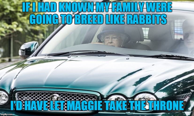 IF I HAD KNOWN MY FAMILY WERE GOING TO BREED LIKE RABBITS I'D HAVE LET MAGGIE TAKE THE THRONE | made w/ Imgflip meme maker