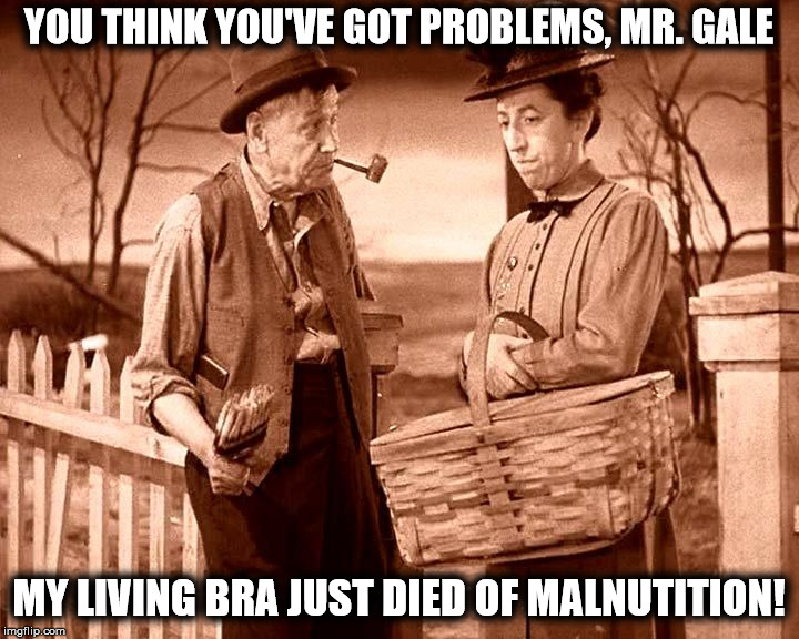 Apparently, she wasn't feeding it enough | YOU THINK YOU'VE GOT PROBLEMS, MR. GALE MY LIVING BRA JUST DIED OF MALNUTITION! | image tagged in bra,wizard of oz,playtex living bra | made w/ Imgflip meme maker