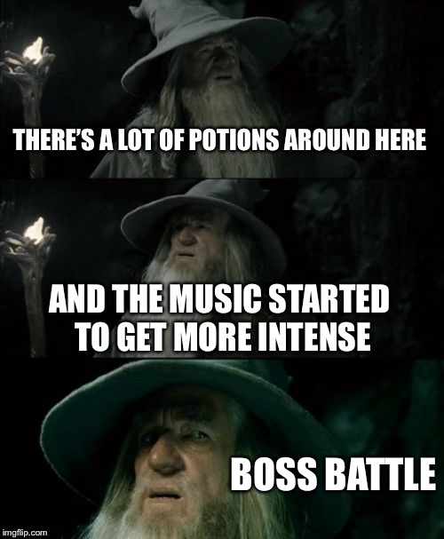 Confused Gandalf Meme | THERE'S A LOT OF POTIONS AROUND HERE AND THE MUSIC STARTED TO GET MORE INTENSE BOSS BATTLE | image tagged in memes,confused gandalf | made w/ Imgflip meme maker