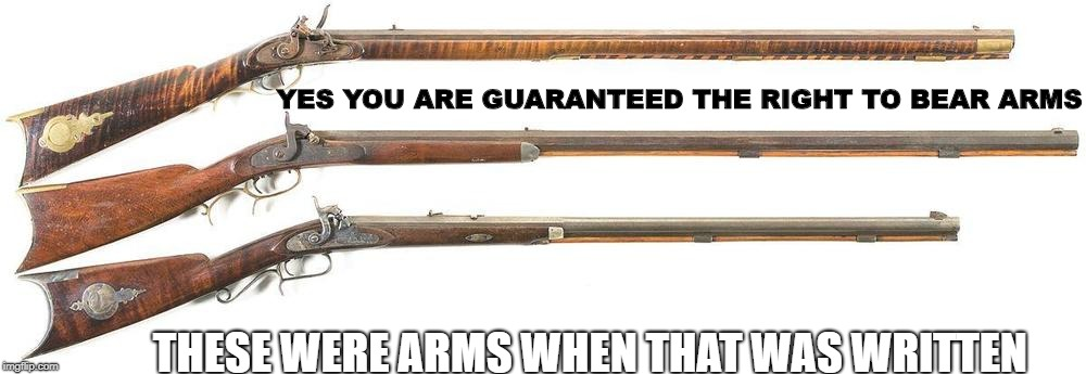 Common Sense Please | YES YOU ARE GUARANTEED THE RIGHT TO BEAR ARMS THESE WERE ARMS WHEN THAT WAS WRITTEN | image tagged in 2nd amendment,rights,right to bear arms | made w/ Imgflip meme maker