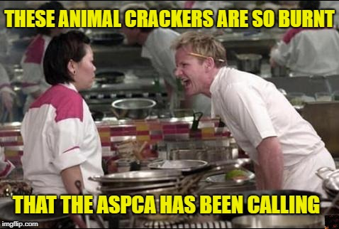Angry Chef Gordon Ramsay | THESE ANIMAL CRACKERS ARE SO BURNT THAT THE ASPCA HAS BEEN CALLING | image tagged in memes,angry chef gordon ramsay | made w/ Imgflip meme maker