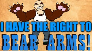 I HAVE THE RIGHT TO BEAR ARMS! | I HAVE THE RIGHT TO | image tagged in funny memes | made w/ Imgflip meme maker