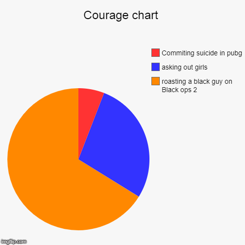Courage chart | roasting a black guy on Black ops 2, asking out girls, Commiting suicide in pubg | image tagged in funny,pie charts | made w/ Imgflip pie chart maker