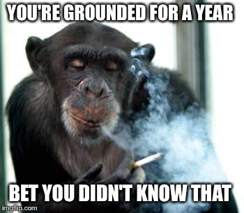 YOU'RE GROUNDED FOR A YEAR BET YOU DIDN'T KNOW THAT | made w/ Imgflip meme maker