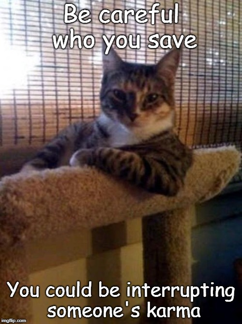 The Most Interesting Cat In The World | Be careful who you save You could be interrupting someone's karma | image tagged in memes,the most interesting cat in the world | made w/ Imgflip meme maker