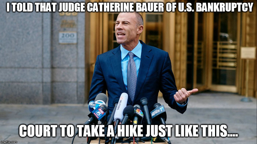 I TOLD THAT JUDGE CATHERINE BAUER OF U.S. BANKRUPTCY COURT TO TAKE A HIKE JUST LIKE THIS.... | image tagged in avanetti | made w/ Imgflip meme maker