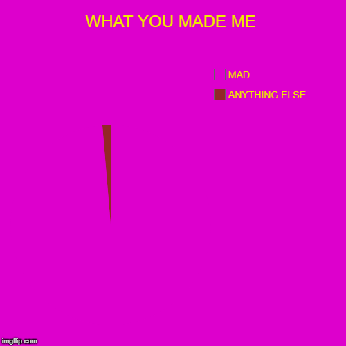 SEE | WHAT YOU MADE ME | ANYTHING ELSE, MAD | image tagged in funny,pie charts | made w/ Imgflip pie chart maker