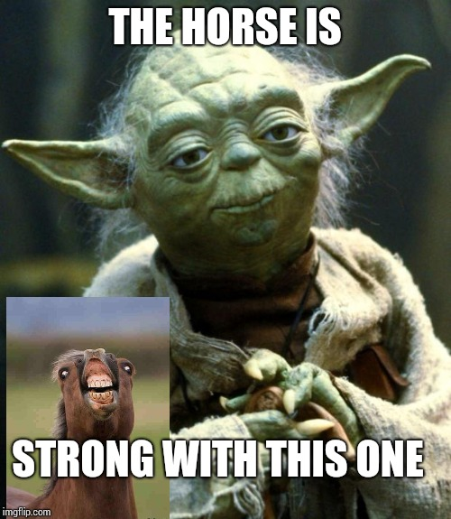 The horse is strong | THE HORSE IS STRONG WITH THIS ONE | image tagged in memes,star wars yoda | made w/ Imgflip meme maker