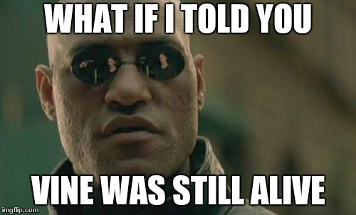 Matrix Morpheus | WHAT IF I TOLD YOU VINE WAS STILL ALIVE | image tagged in memes,matrix morpheus | made w/ Imgflip meme maker