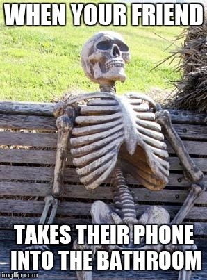 Waiting Skeleton Meme | WHEN YOUR FRIEND TAKES THEIR PHONE INTO THE BATHROOM | image tagged in memes,waiting skeleton | made w/ Imgflip meme maker