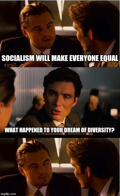 Inception Meme | SOCIALISM WILL MAKE EVERYONE EQUAL WHAT HAPPENED TO YOUR DREAM OF DIVERSITY? | image tagged in memes,inception | made w/ Imgflip meme maker