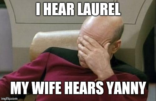 Captain Picard Facepalm Meme | I HEAR LAUREL MY WIFE HEARS YANNY | image tagged in memes,captain picard facepalm | made w/ Imgflip meme maker