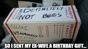 Happy birthday, sweetie! | SO I SENT MY EX-WIFE A BIRTHDAY GIFT... | image tagged in ex-wife,birthday gift | made w/ Imgflip meme maker