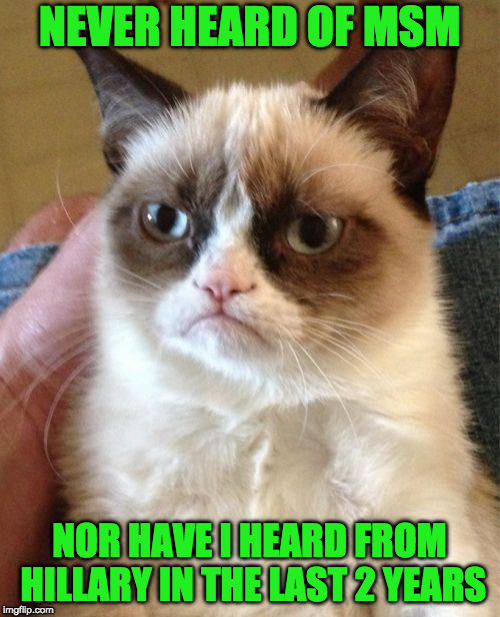 Grumpy Cat Meme | NEVER HEARD OF MSM NOR HAVE I HEARD FROM HILLARY IN THE LAST 2 YEARS | image tagged in memes,grumpy cat | made w/ Imgflip meme maker