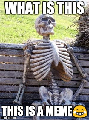 Waiting Skeleton | WHAT IS THIS THIS IS A MEME | image tagged in memes,waiting skeleton | made w/ Imgflip meme maker