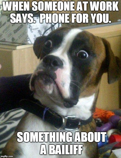 Blankie the Shocked Dog | WHEN SOMEONE AT WORK SAYS.  PHONE FOR YOU. SOMETHING ABOUT A BAILIFF | image tagged in blankie the shocked dog | made w/ Imgflip meme maker