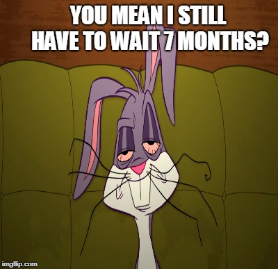 YOU MEAN I STILL HAVE TO WAIT 7 MONTHS? | made w/ Imgflip meme maker