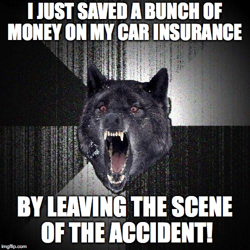 Insanity Wolf Meme | I JUST SAVED A BUNCH OF MONEY ON MY CAR INSURANCE BY LEAVING THE SCENE OF THE ACCIDENT! | image tagged in memes,insanity wolf | made w/ Imgflip meme maker