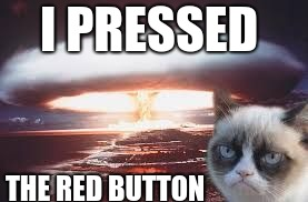 I PRESSED THE RED BUTTON | image tagged in nuke | made w/ Imgflip meme maker