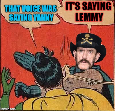 Lemmy slapping Robin | THAT VOICE WAS SAYING YANNY IT'S SAYING LEMMY | image tagged in memes,batman slapping robin,yanny vs laurel,lemmy kilmister | made w/ Imgflip meme maker