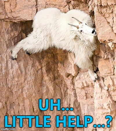 I can climb, climb, climb any mountain... :) | UH... LITTLE HELP...? | image tagged in mountain goat,memes,animals | made w/ Imgflip meme maker