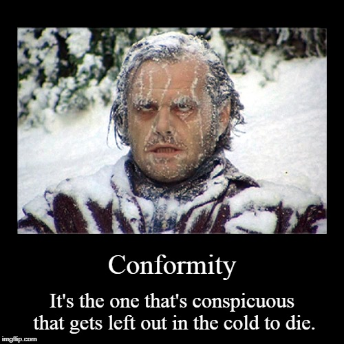 Conformity | It's the one that's conspicuous that gets left out in the cold to die. | image tagged in funny,demotivationals | made w/ Imgflip demotivational maker
