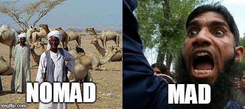 Word Play for the Win!! | NOMAD MAD | image tagged in nomad,mad,word play,puns,memes,funny | made w/ Imgflip meme maker