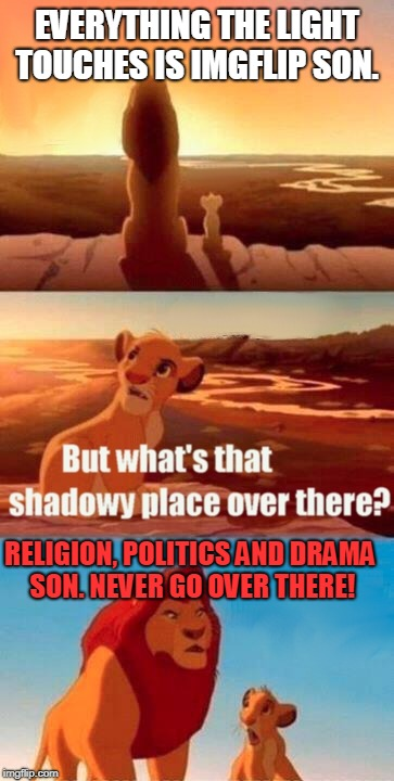 Just don't go there and everything will be fine! | EVERYTHING THE LIGHT TOUCHES IS IMGFLIP SON. RELIGION, POLITICS AND DRAMA SON. NEVER GO OVER THERE! | image tagged in memes,simba shadowy place,nixieknox | made w/ Imgflip meme maker