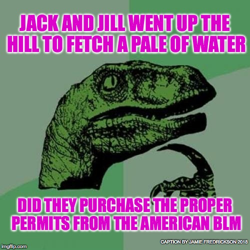 Philosoraptor Meme | JACK AND JILL WENT UP THE HILL TO FETCH A PALE OF WATER DID THEY PURCHASE THE PROPER PERMITS FROM THE AMERICAN BLM CAPTION BY JAMIE FREDRICK | image tagged in memes,philosoraptor | made w/ Imgflip meme maker