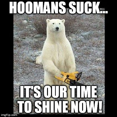 Chainsaw Bear | HOOMANS SUCK... IT'S OUR TIME TO SHINE NOW! | image tagged in memes,chainsaw bear | made w/ Imgflip meme maker
