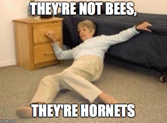 THEY'RE NOT BEES, THEY'RE HORNETS | made w/ Imgflip meme maker