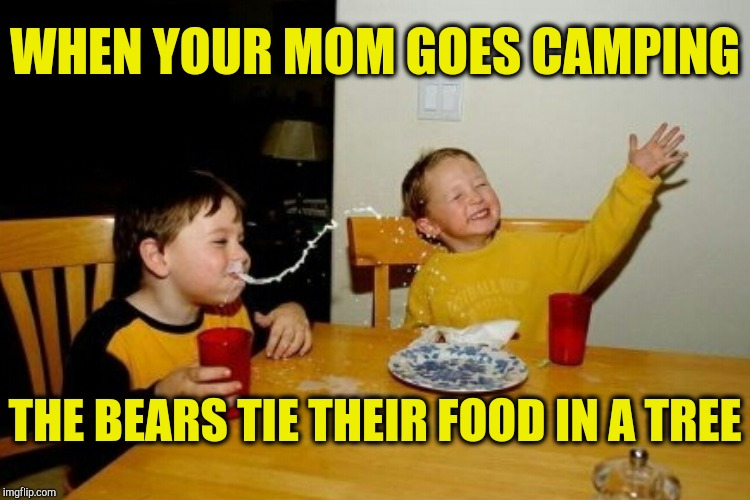 WHEN YOUR MOM GOES CAMPING THE BEARS TIE THEIR FOOD IN A TREE | made w/ Imgflip meme maker